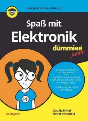dummis_Spaß-mit-Elektronik
